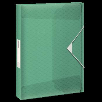 Box na spisy Esselte Colour'Ice Zelená
